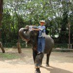 タイのチェンマイでおすすめの観光旅行スポット7つ